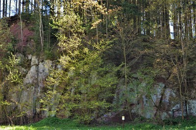 Alpská víska - lom