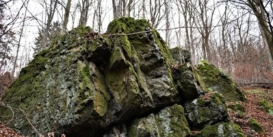 Exkurze s geologem na Šonovskou sopku