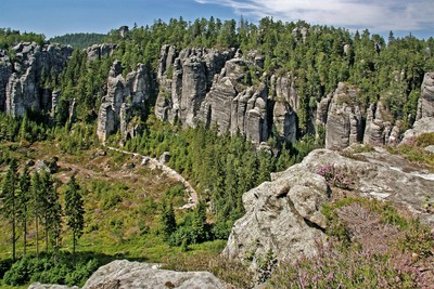 Pozorování hnízdění sokola stěhovavého v Teplických skalách